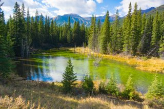 Kananaskis Country 2014  007.jpg
