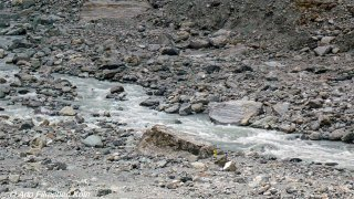 Lake Country - Glacier World040.jpg