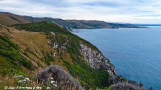Nugget Point - Tokata015.jpg