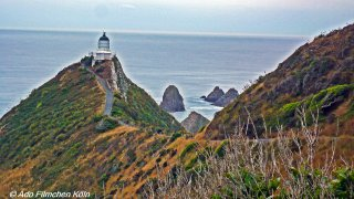 Nugget Point - Tokata018.jpg