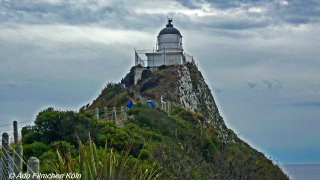 Nugget Point - Tokata020.jpg