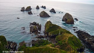 Nugget Point - Tokata021.jpg
