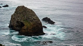 Nugget Point - Tokata022.jpg