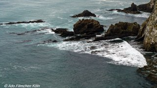 Nugget Point - Tokata023.jpg