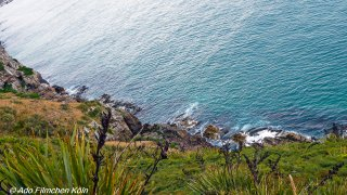 Nugget Point - Tokata024.jpg
