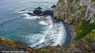 Nugget Point - Tokata025.jpg