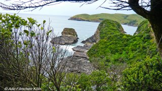 Nugget Point - Tokata035.jpg