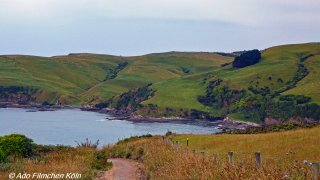 Nugget Point - Tokata036.jpg